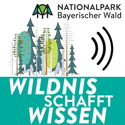 Nationalpark Podcast - Wildnis schafft Wissen